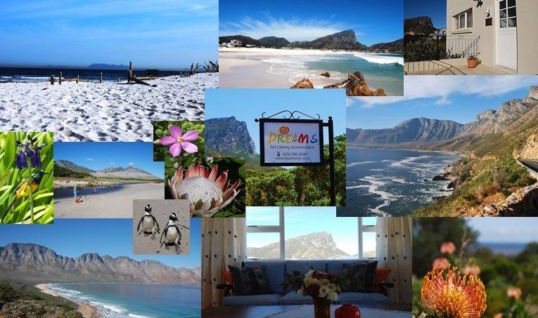 Dreams Pringle Bay Beach Accommodation