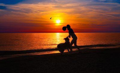 Bazley Beach Things to Do